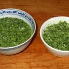 Scallion Garlic Pesto Recipe